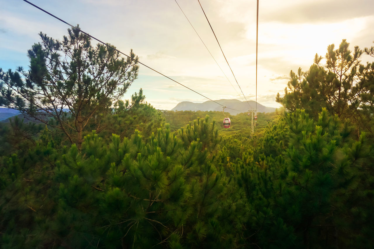 Cabin Cabin In The Woods Cable Car Dalat Freshness Growth High Section Landscape Mountain Nature Outdoors Overhead Cable Car Sky Sunset Tree Vietnam Viewpoint