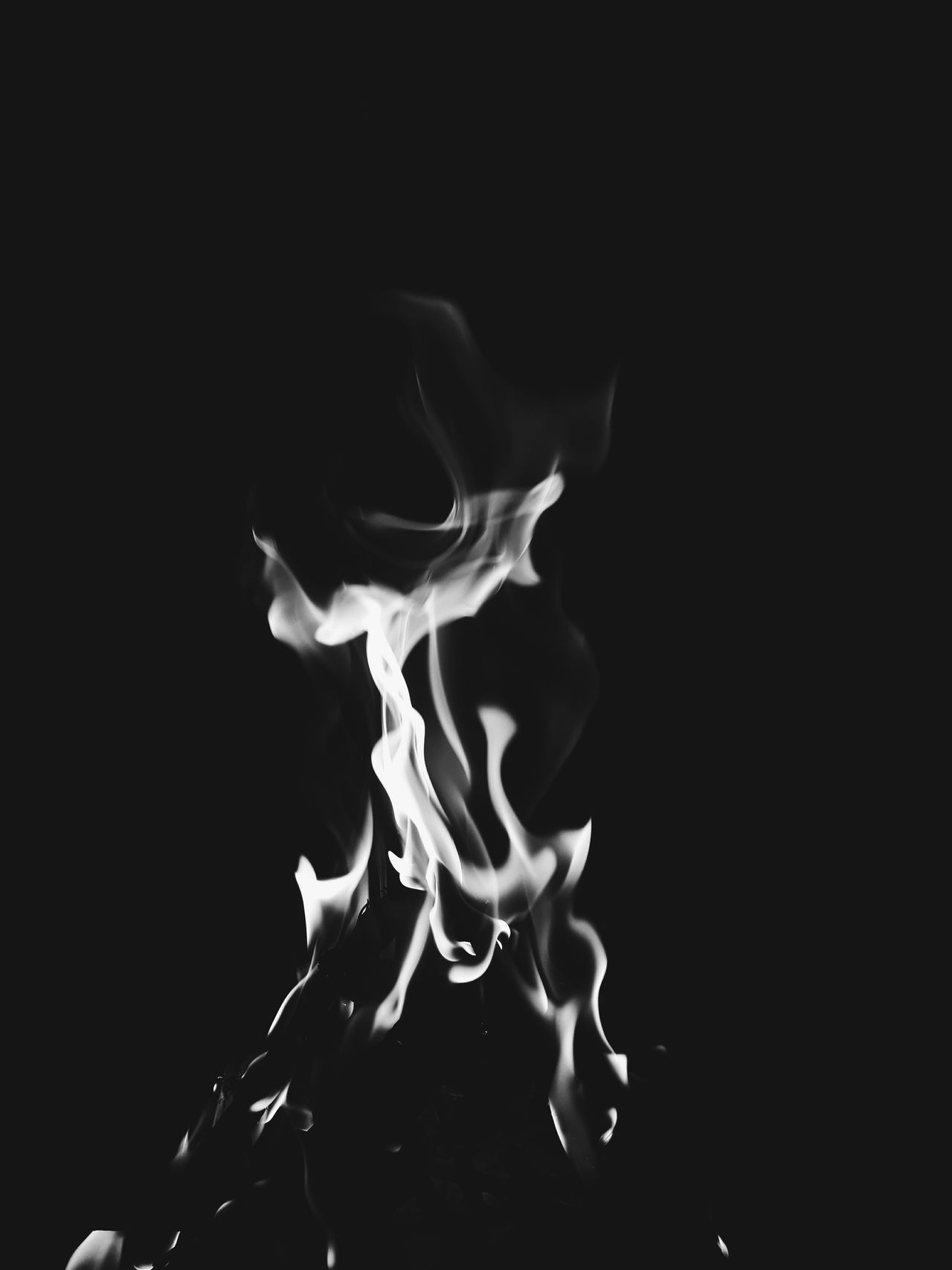 Black Background Fragility Studio Shot No People Close-up Beauty In Nature Flame Flames & Fire Flame, Fire, Blaze, Conflagration, Inferno