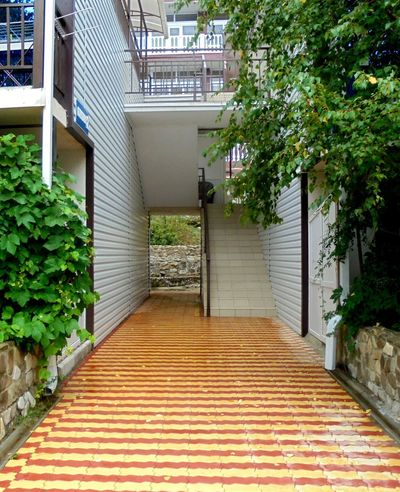 Balcony Building Door Gallery Little Hostel Stairs Thoroughfare Tree