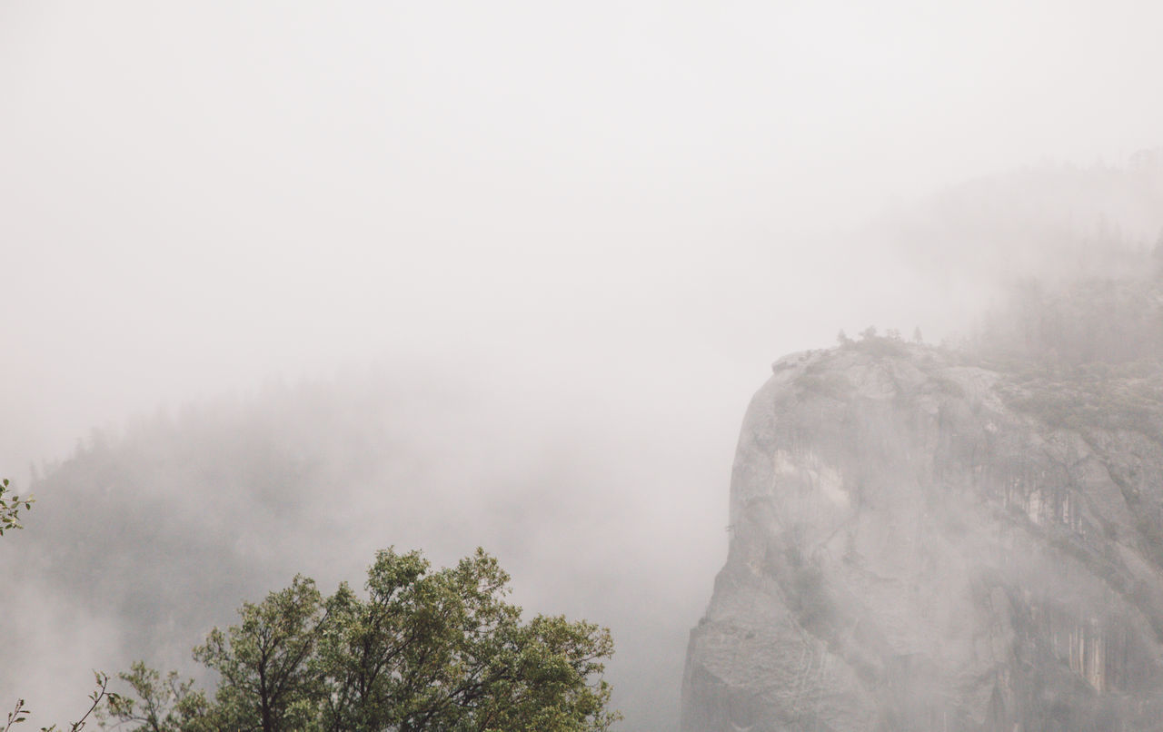 Beauty In Nature Day Fog Foggy Mist Mountain Nature No People Outdoors Rainy Scenics Sky Tranquil Scene Tranquility Tree Weather Yosemite Yosemite National Park Yosemite Valley
