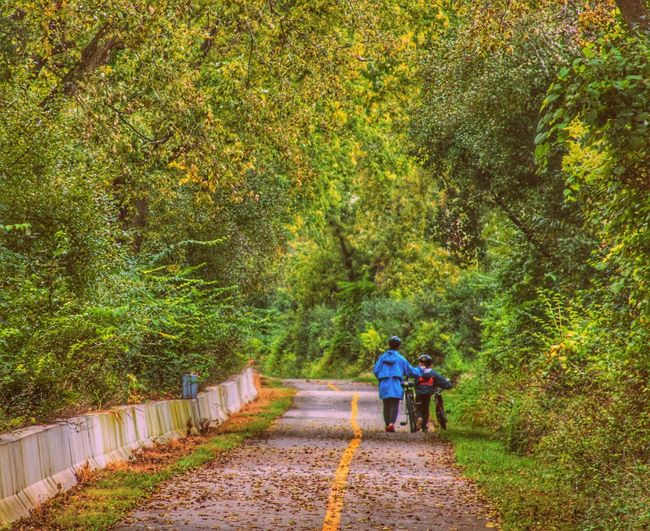 Walking Rear View Full Length The Way Forward Green Color Growth Steps Solitude Nature Outdoors Leisure Activity Old And Young Early Fall Enjoying Life CyclingUnites