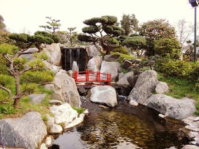 Jardin Japones Fuente❤Agua
