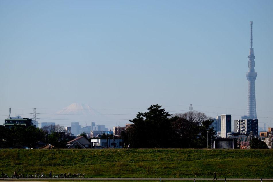 千葉県側江戸川河川敷から富士山 Fujifilm Fujifilm X-E2 Fujifilm_xseries Japan Japan Photography Mt.Fuji Outdoors Sky Skytree Tokyo Sky Tree Urban XC50 Xc50230 スカイツリー 富士山 東京スカイツリー 天空樹 晴空塔