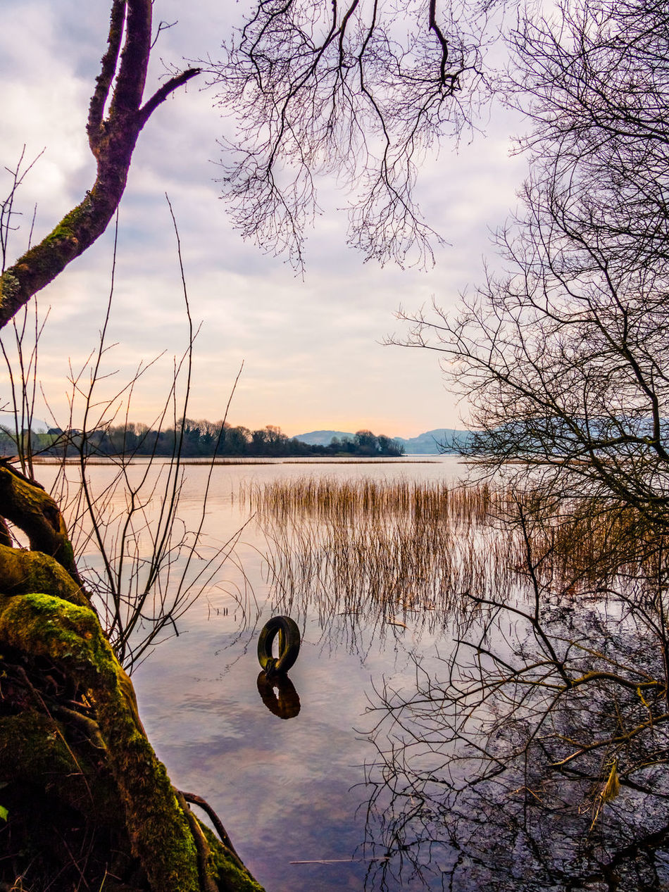 Lough Derg Ireland Lake Lough Sunset Sky Water Tranquility No People Tree Nature Outdoors Branch Beauty In Nature Landscape Landscapes Water's Edge Inis Cealtra Colourful Reflection Moss