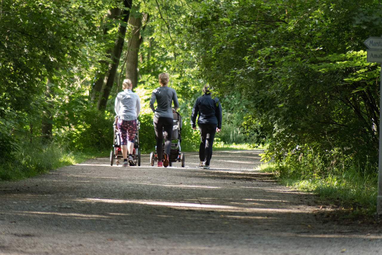 Beautiful stock photos of muttertag, tree, healthy lifestyle, bicycle, cycling