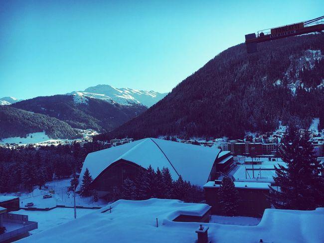 Showcase: February Snowy Morning