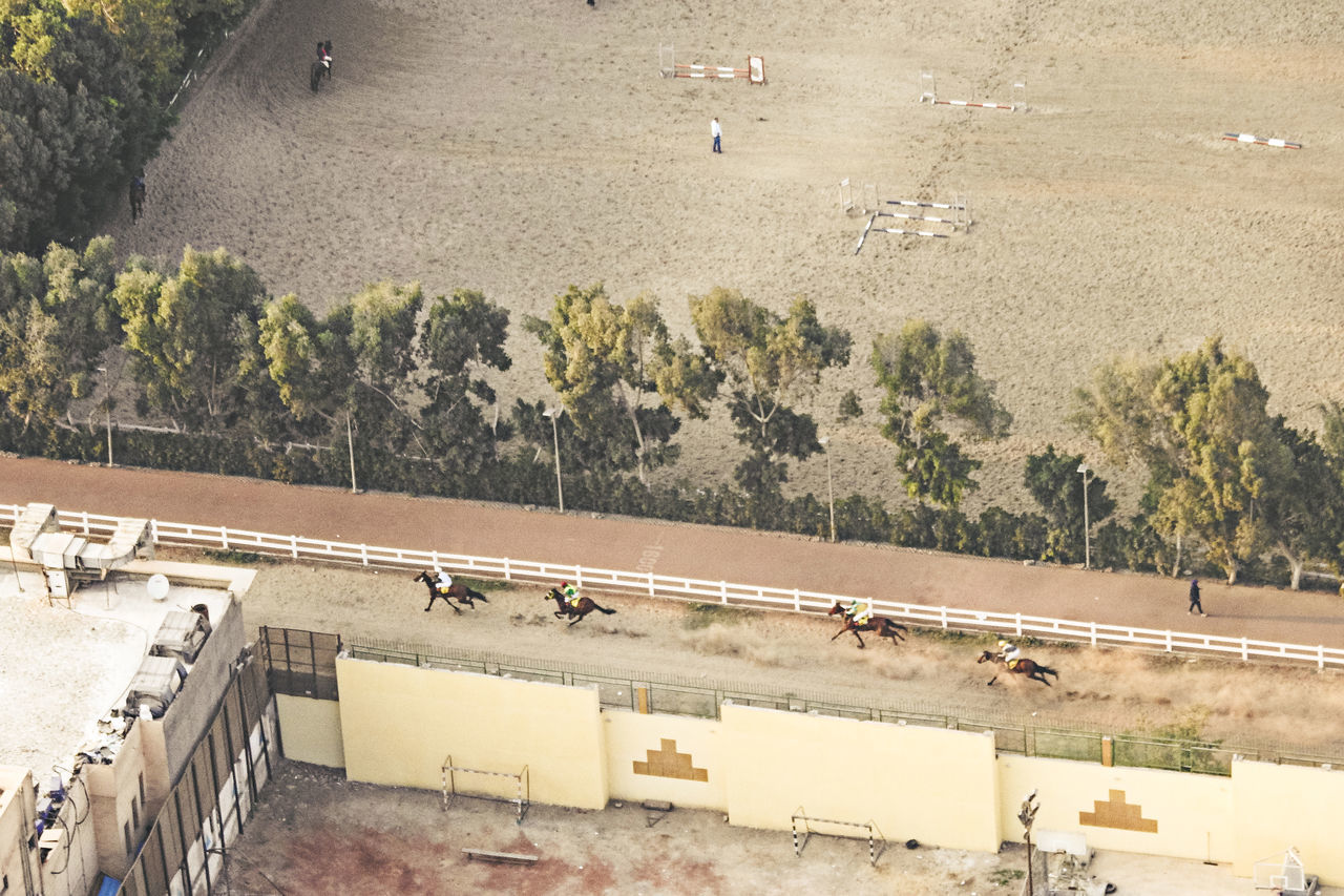 Aerial View Arabian Horses Architecture Check This Out Day Exceptional Photographs EyeEm Best Shots Field First Eyeem Photo Flying High High Angle View Horse Jockeys Land Vehicle Nature No People Outdoors Popular Photos Race Training Transportation Travel Destinations
