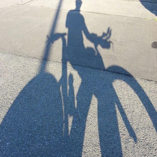 Early Morning Ride Imlp2014