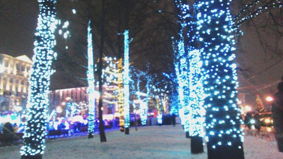 Moscow Trees гирлянда Betuful Winter New 2016 Colors Sky Night Green Blue City Russia Gerland Snow ❄ Cold New Years Resolutions 2016