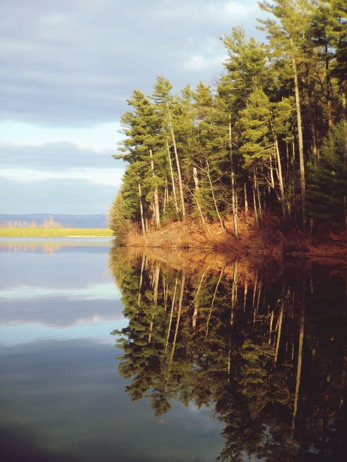 Water Reflections Landscape Wilderness Lake Virginia Lake Arrowhead
