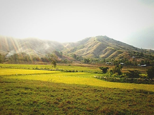 Landscapes With WhiteWall Mountain View Nature_collection Nature Photography PhonePhotography Philippines Rizal Antipolo Canumay Urban