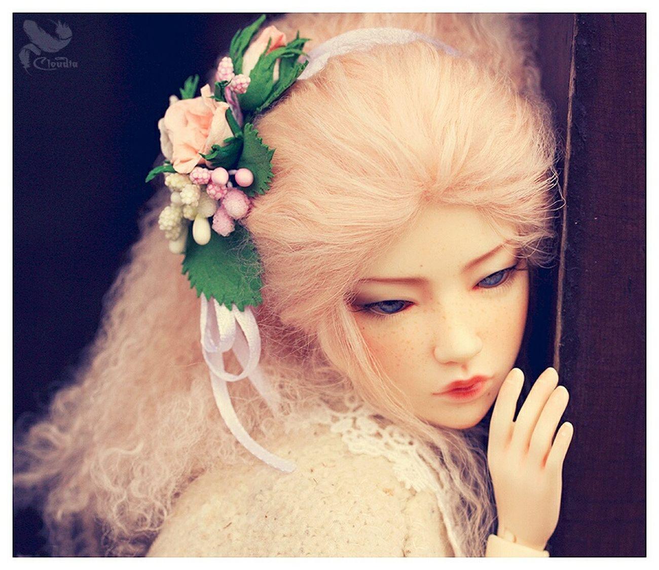 Alice's adventures Bjd BjdDolls Iplehouse ASA Jid Pink Mori Morigirl  Alice