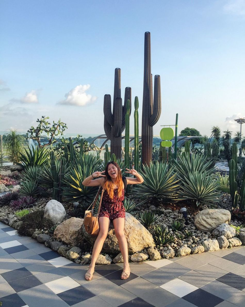Singapore Changiairport Cactus Cactusgarden Rooftop Leisure Activity Lifestyles Cloud - Sky Vacations Outdoors Summerholiday Cactus Plant Modern