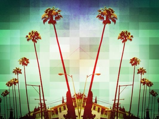 Palms at Los Angeles by rirk