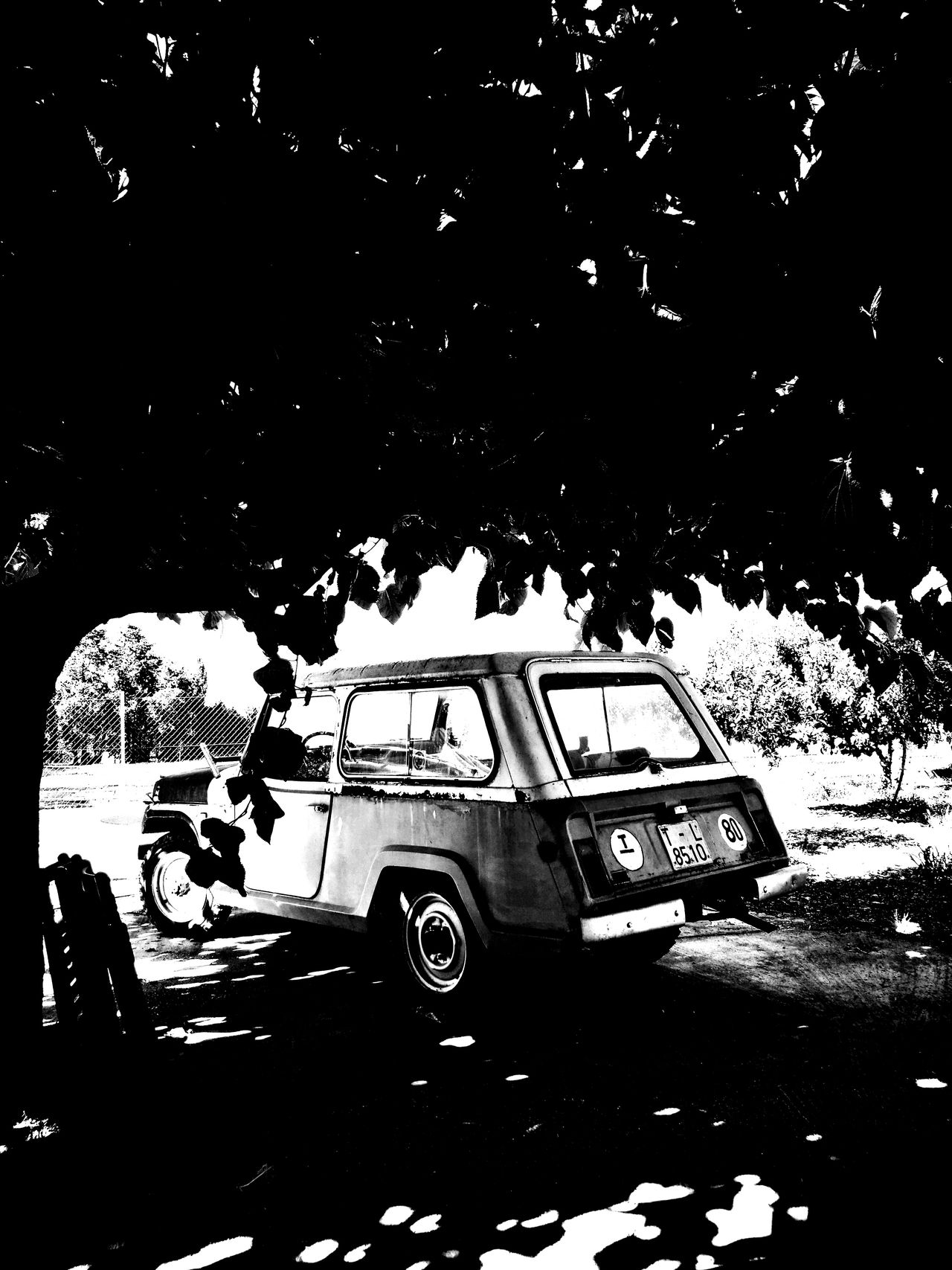 Old Car! Sun! Chill! Relaxing Enjoying Life First Eyeem Photo