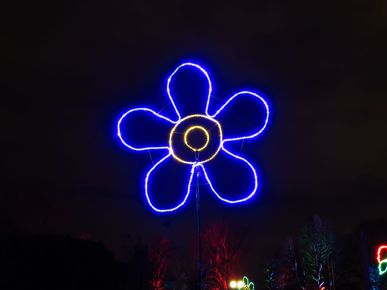 Abstract Flower Flower Shape Glow Glowing Glowinthedark Ideas Illuminated Illumination Lightpainting Neon Night Painted Flower Shape Symbol