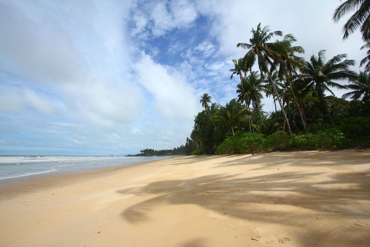 Empty tropical beach with coconut trees Beach Coast Coastal Coconut Empty Holiday Island Nobody Sand Sandy Sea Seaside Trees Tropical Tropics Vacations