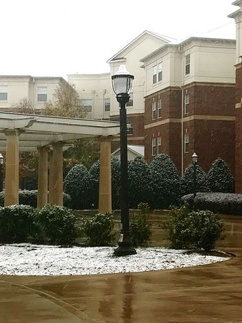Snowy day University Of Alabama University Trees Snow Peaked Trees Architecture Building Exterior Built Structure No People Outdoors Day Water Tree Sky