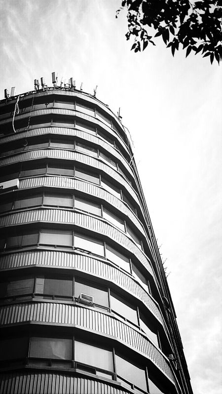 Building Tree Blur Sky Monochrome @korea seoul uljiro-6ga @Sony NEX-5N / 16mm f2.8