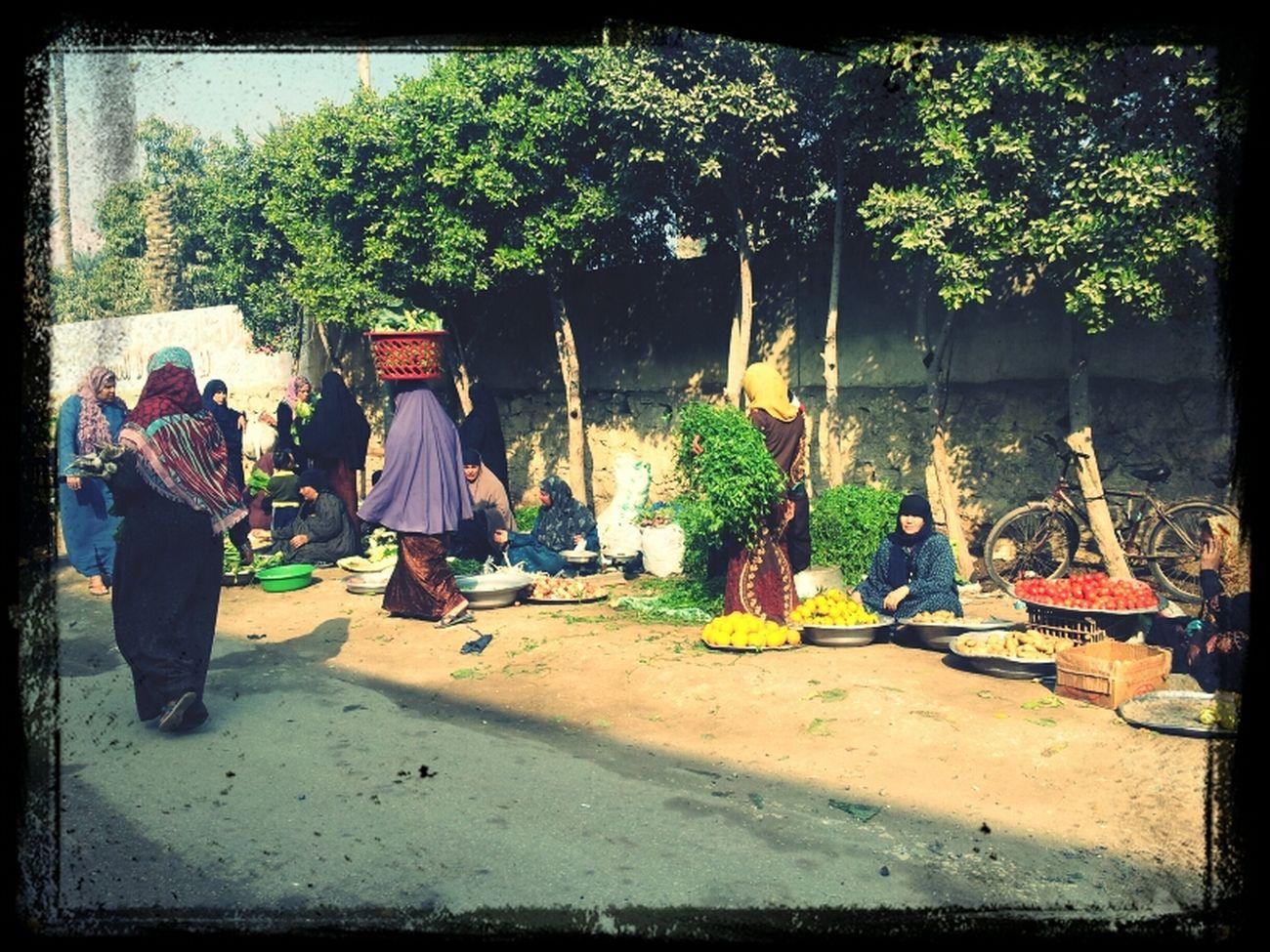 Pasar tani di kwsn kampung Abou Rawas, Giza~ Malaysia dlu2 cmni agaknya....