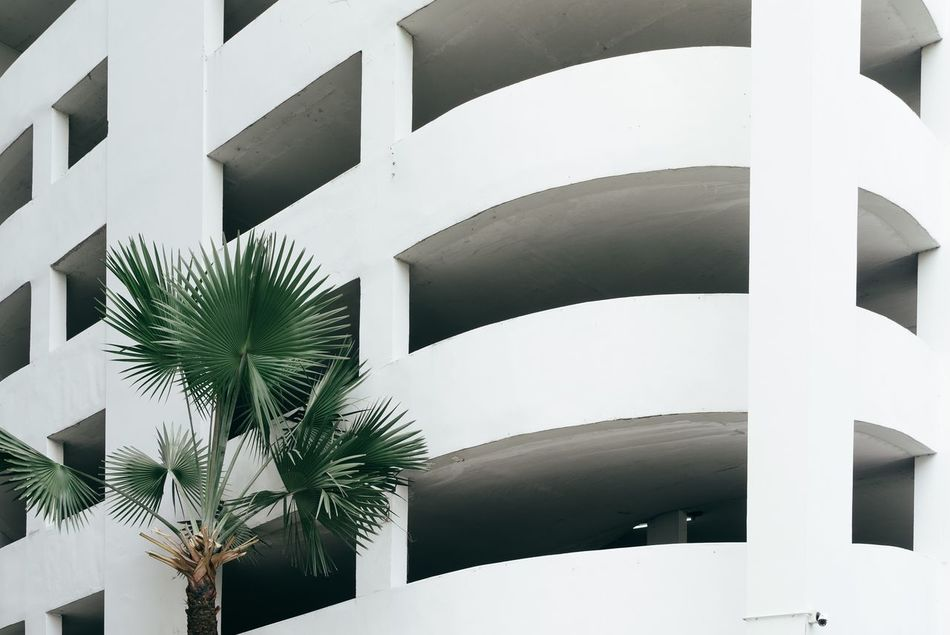 Bangkok Thailand. Bangkok Built Structure Architecture Low Angle View Outdoors Architecture Architecture_collection Minimalism White Parking Garage Minimal Minimalobsession Palm Palm Tree Plants