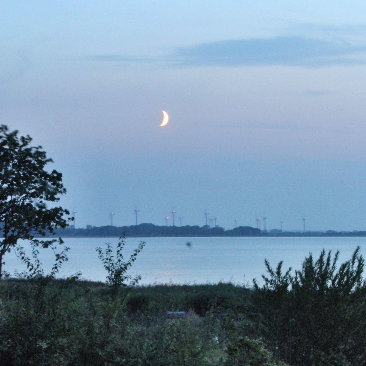 Beautiful stock photos of mond, Beauty In Nature, Blue, Denmark, Grass