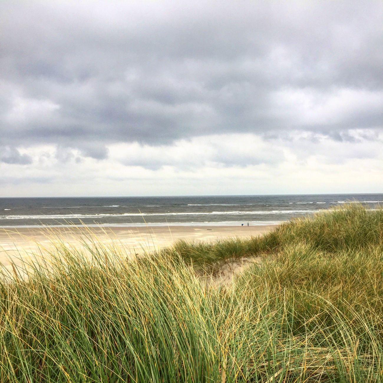 Northsea Danmark Autumn