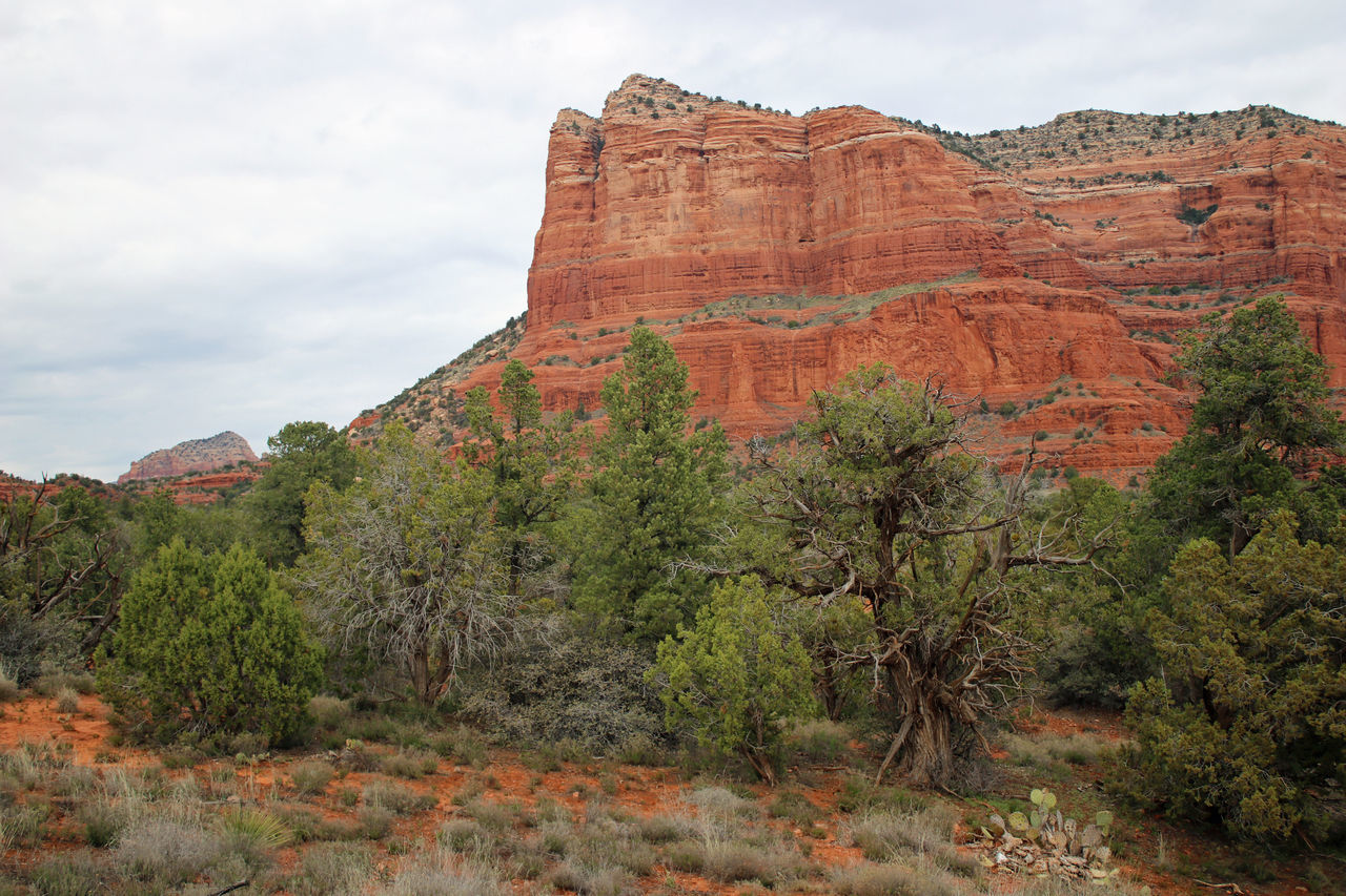 Red Rocks Beauty In Nature Canyon Cliff Day Eco Tourism Geology Landscape Nature No People Outdoors Red Rock - Object Rock Face Rock Formation Scenics Sedona, Arizona Sky Tourism Travel Destinations