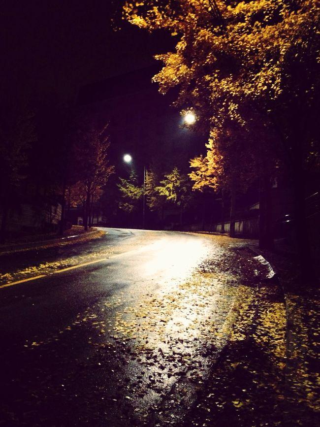 Walking at 2am Autumn Night Autumn Street Life 2am