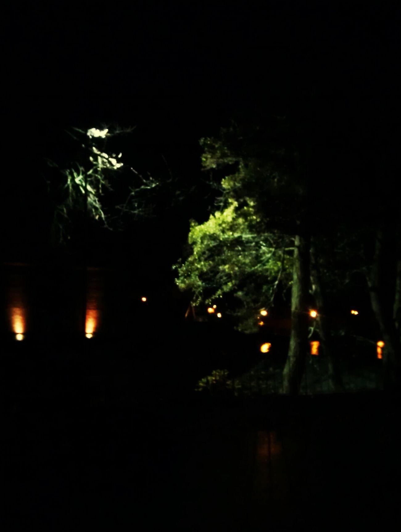 Lights in the dark... Light And Shadow EyeEm Best Shots Night Pic  Lightreflection