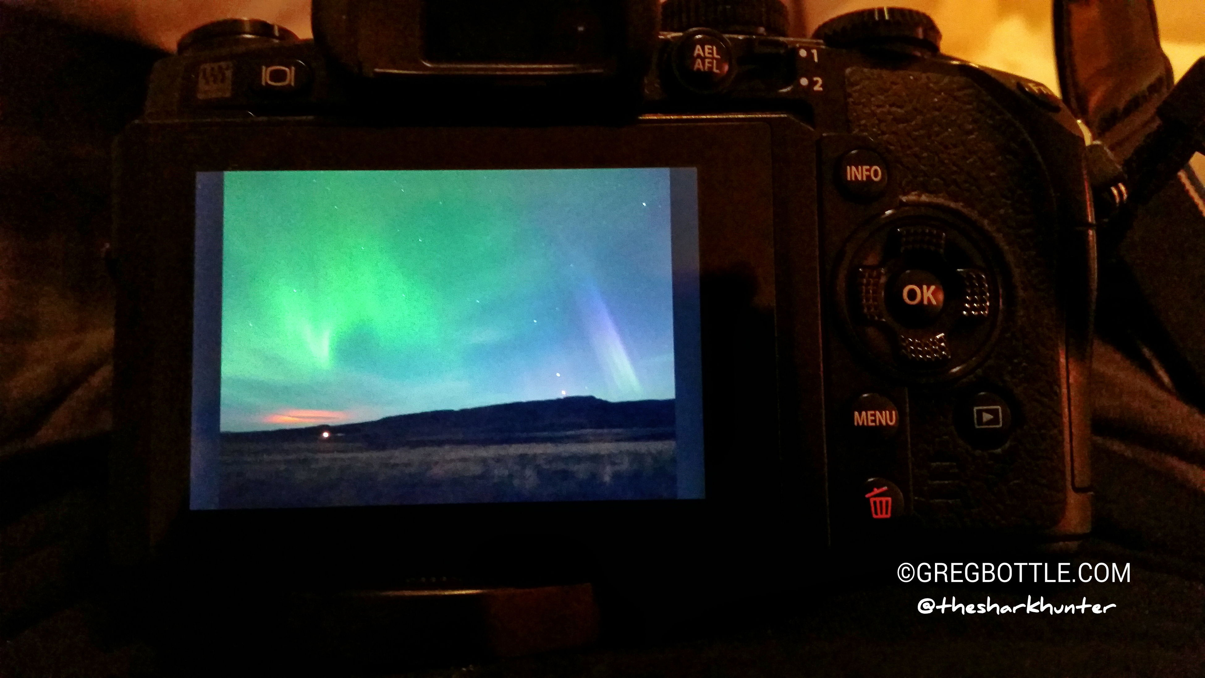 Aurora was pretty good tonight at Egilsstadir, until clouds rolled in. Sorry, proper photos won't come until I get back home, but here is a teaser of the back of my camera. Iceland Aurora Borealis Nature_collection EyeEm Nature Lovers
