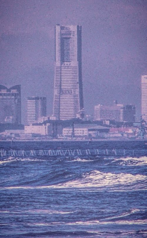 東京湾 EyeEm Enjoying Life