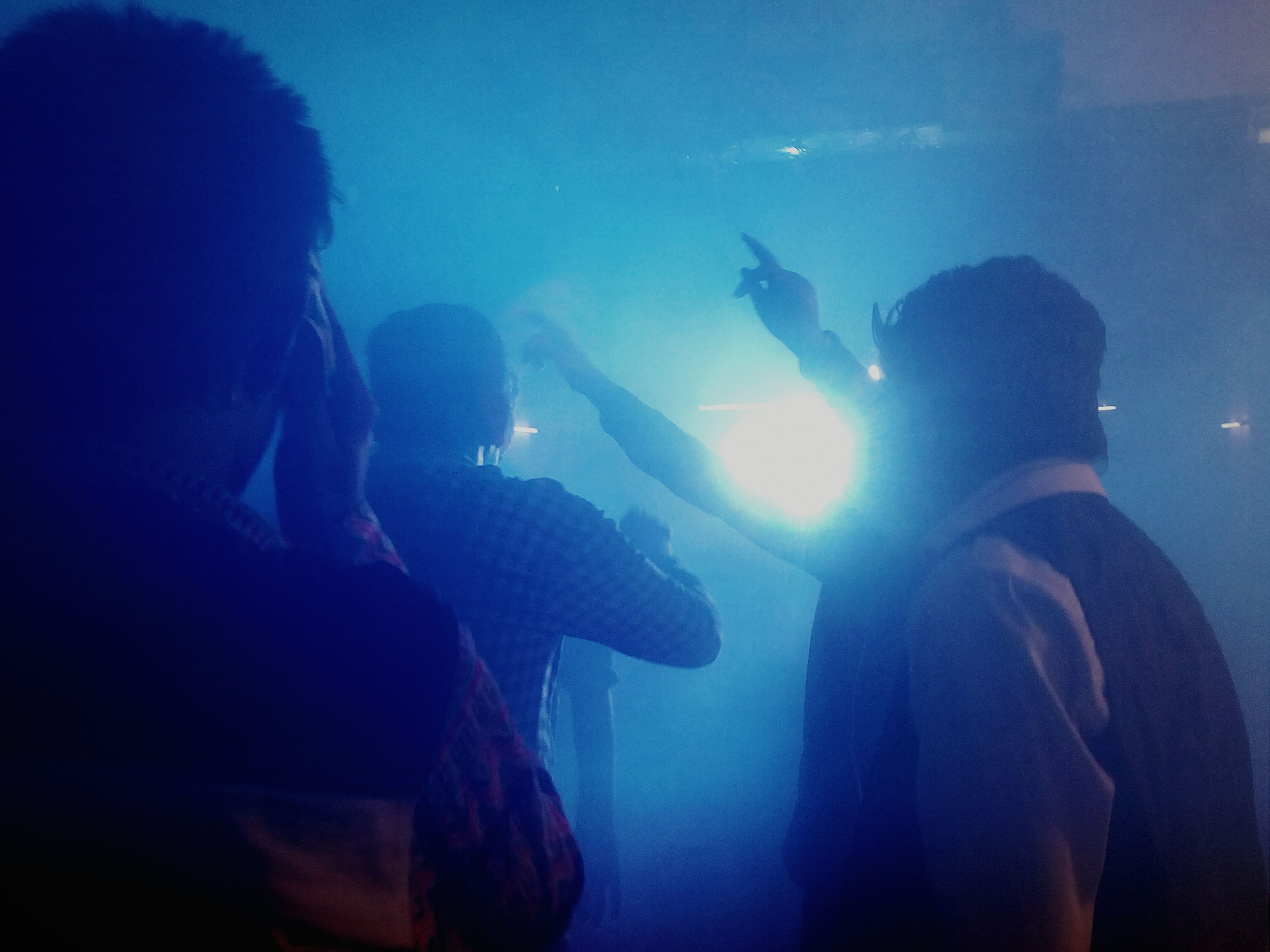 lifestyles, leisure activity, men, togetherness, silhouette, indoors, enjoyment, blue, person, underwater, music, fun, arts culture and entertainment, concert, rear view, nightlife, youth culture