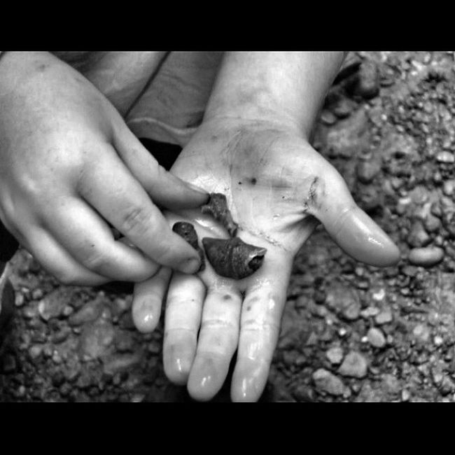 #ic_nature #ic_nature_explore Ic_nature Ic_daily Ic_nature_explore Ic_daily_hands
