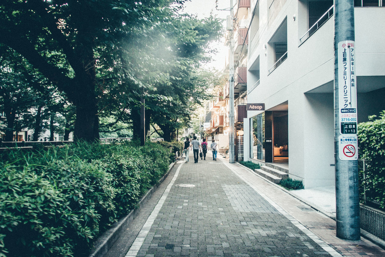 Rear View Of People Walking On Footpath Amidst Trees And Buildings