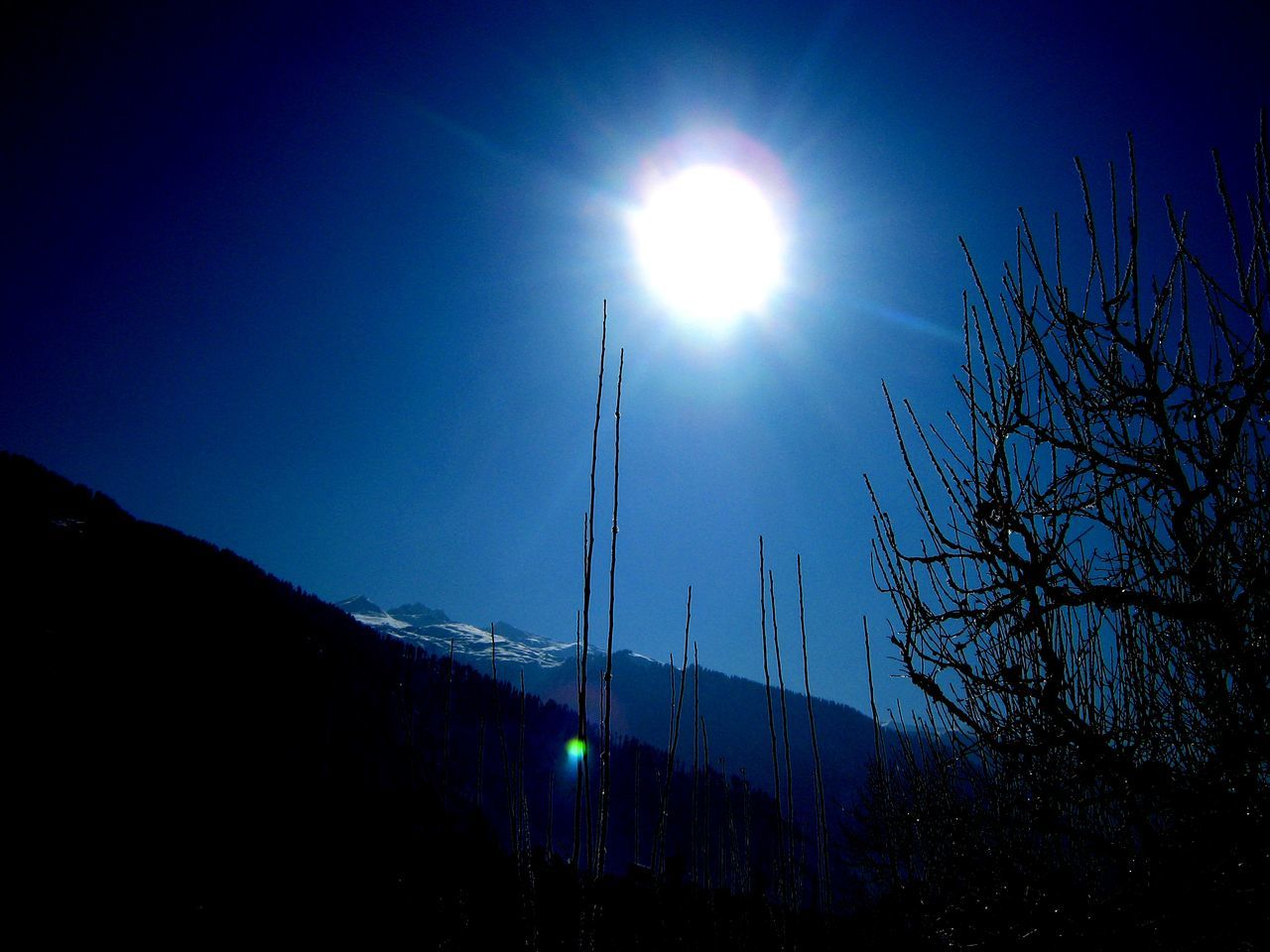 Mountain And Sky Nature Nature_collection Sun And Sky Sunny Cold Day Sunny Day Sunny Showy Tree And Sunlight