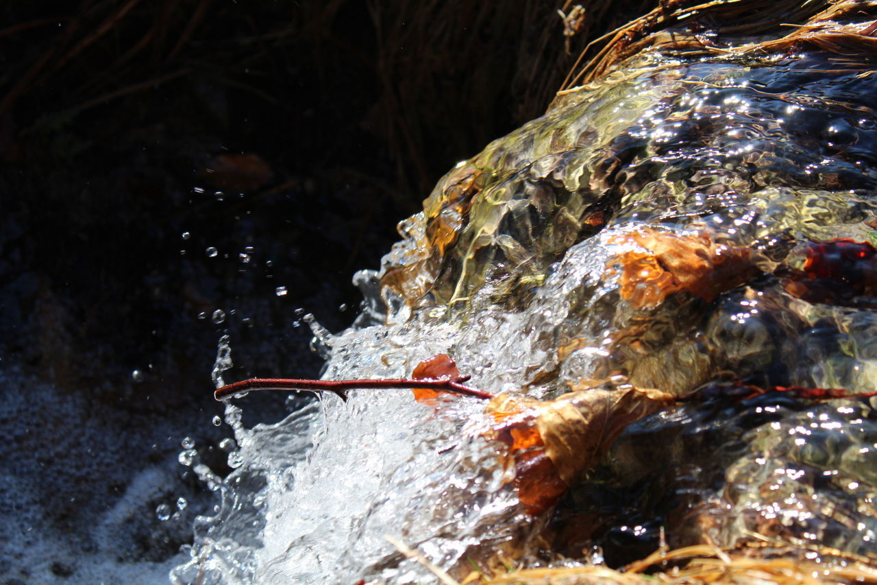 water, motion, nature, outdoors, close-up, no people, day, beauty in nature