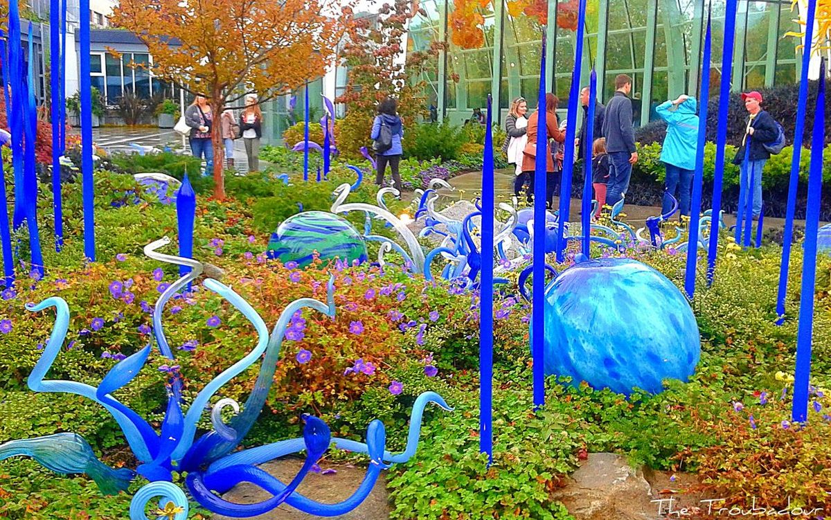 """""""Lost in a jungle of blue glass flowers at Chihuly Garden and Glass"""" 🌐 Glass Art Multi Colored Outdoors Building Exterior People not my First Eyeem Photo The Way I See It The Week On Eyem EyeEm Best Shots Glass - Material From My Eyes To Yours EyeEm Gallery Eyeemphotography Best Eyeem Pics This Week On Eyeem Eye4photography  Built Structure Nature On Your Doorstep Tranquility Glass Photo Of The Day in Downtown Seattle, Washington ( USA )"""
