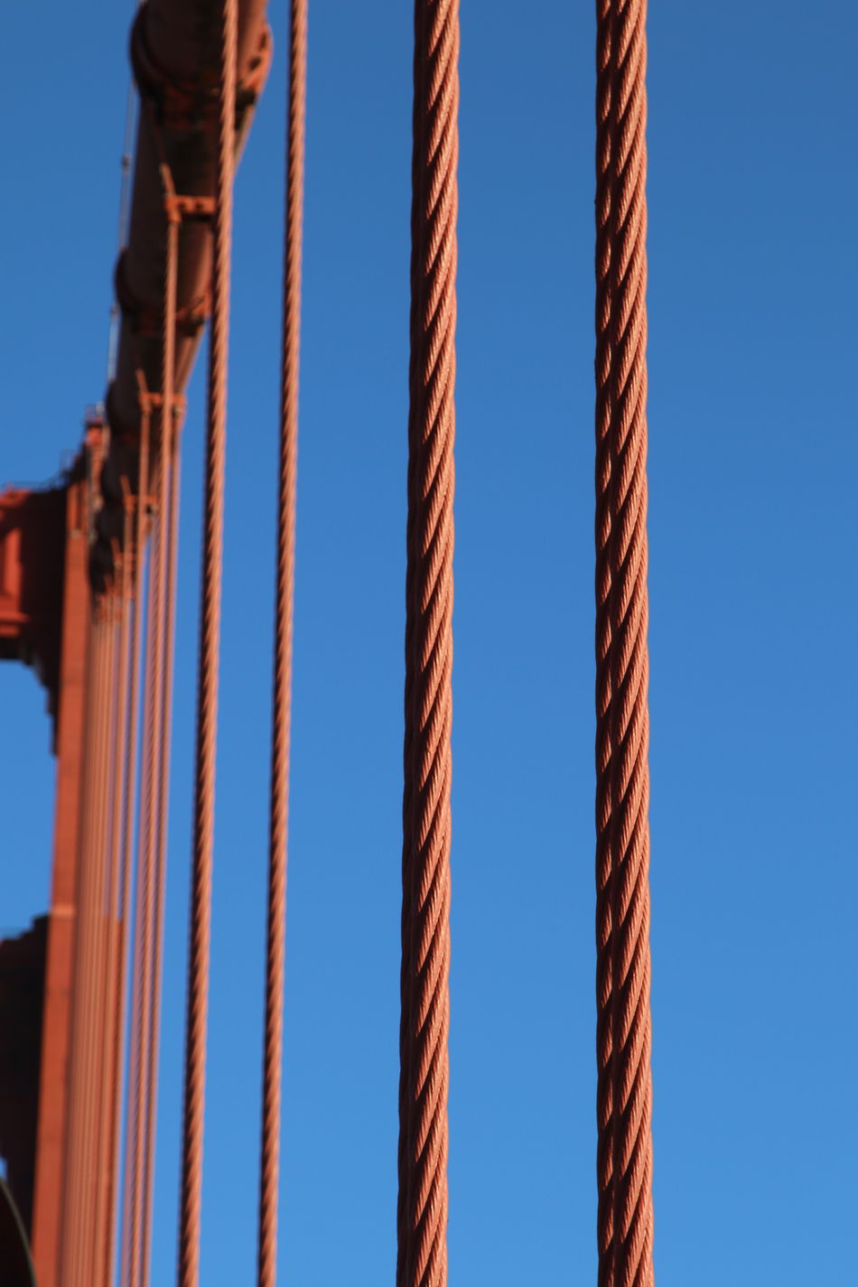 Bridge Close-up Construction Golden Gate Bridge Outdoors Sky Stability Steel Cables Steel Strings Steel Wires