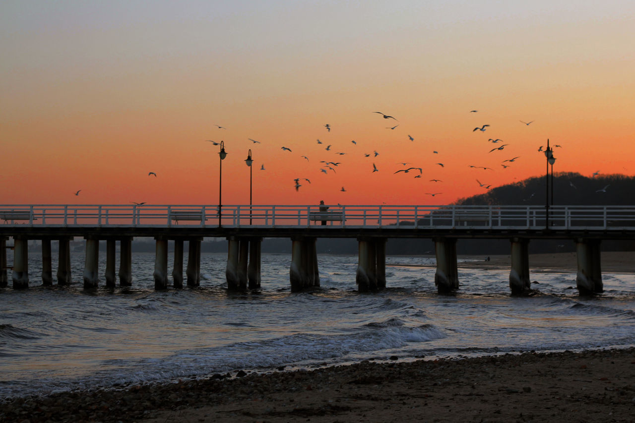 sunset, bird, bridge - man made structure, flock of birds, animals in the wild, large group of animals, water, flying, animal wildlife, nature, sea, animal themes, sky, outdoors, railing, silhouette, beauty in nature, scenics, built structure, no people, mid-air, architecture, spread wings, day