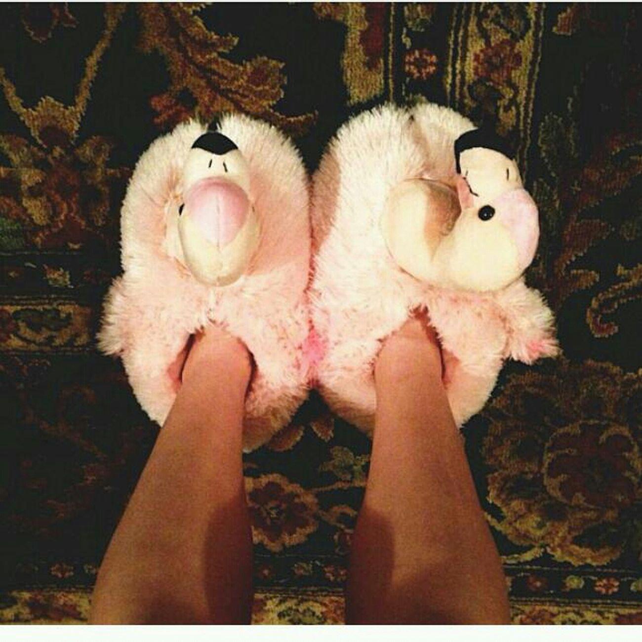 13. Like My Slips? YES