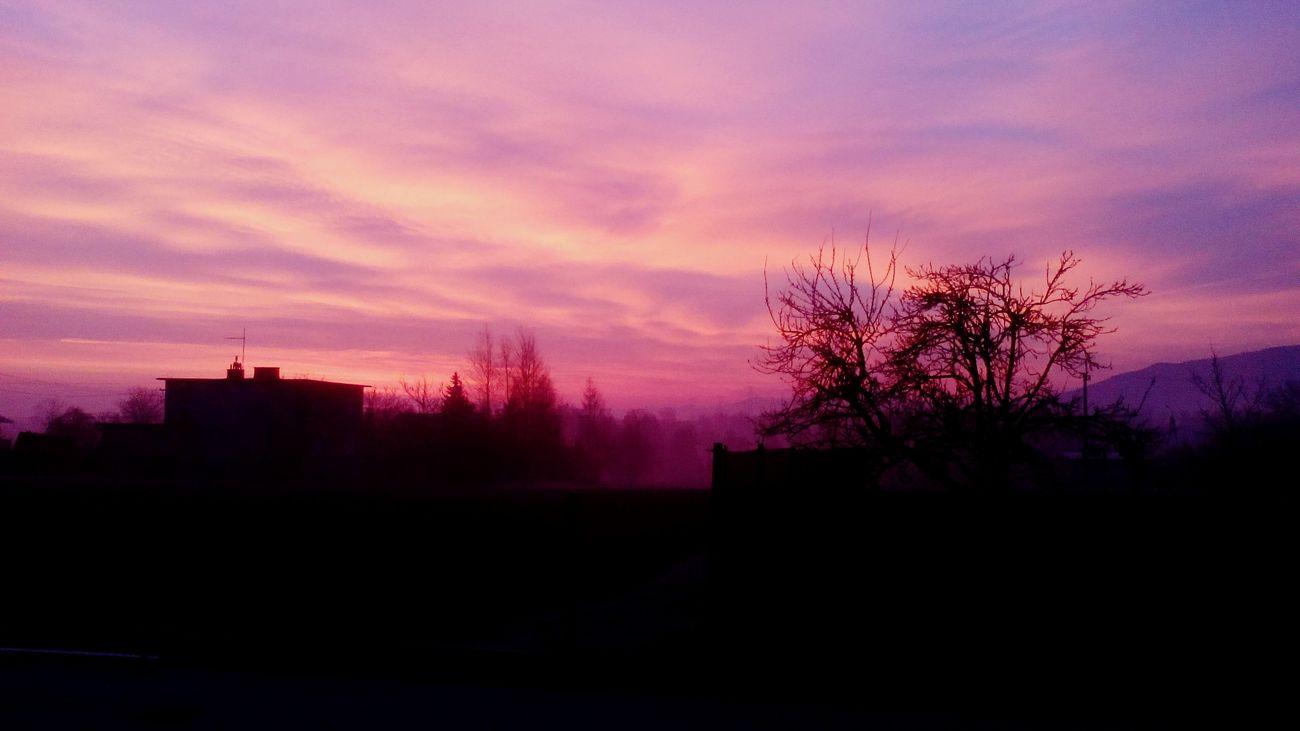 Sunrise Morning Sky Morning Trees