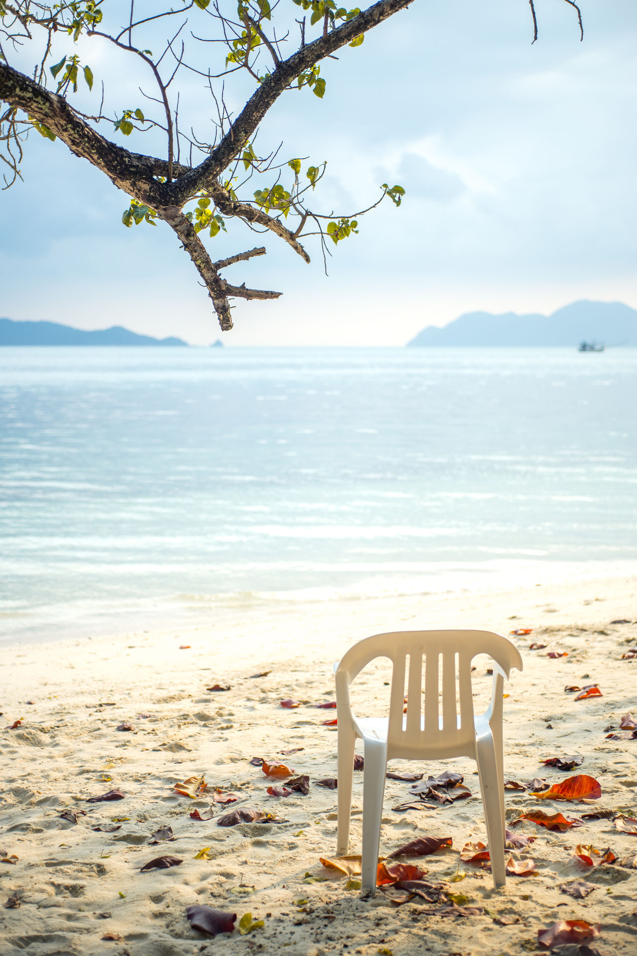 Beautiful stock photos of thailand, Absence, Bangkok, Beach, Beauty In Nature