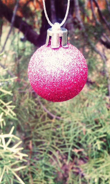 Christmasbauble Fading Pink Taking Photos