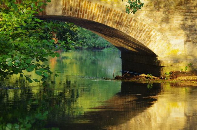 Landscape Beauty In Nature Horizon Over Water Water Bridge - Man Made Structure Reflection Arch Bridge Arch River Bridge Tranquility Nature Flowing Water