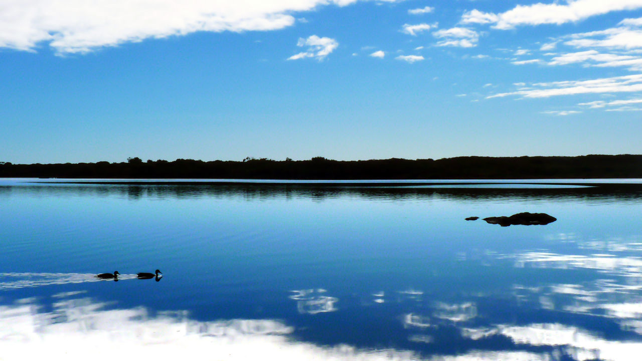 Australia Blue Blue Sky Calm Clouds Ducks Lake Lakeshore Landscape Nature Outdoors Port Augusta Reflection Reflections Rippled River Silhouettes Sky Travel Water Western Australia Landscapes With WhiteWall