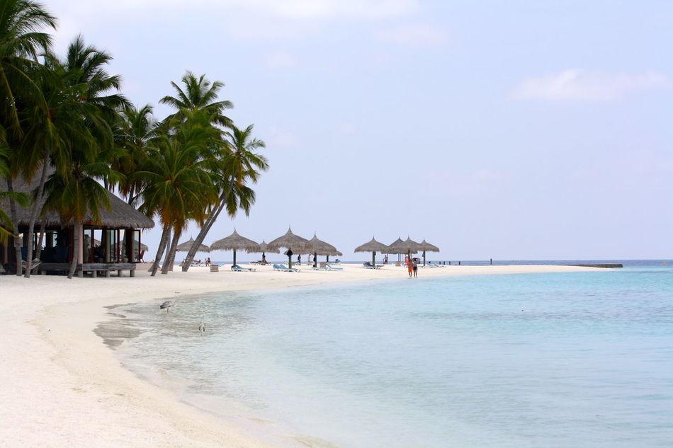 Beautiful stock photos of jamaica, Beach, Cloud, Day, Horizon Over Water