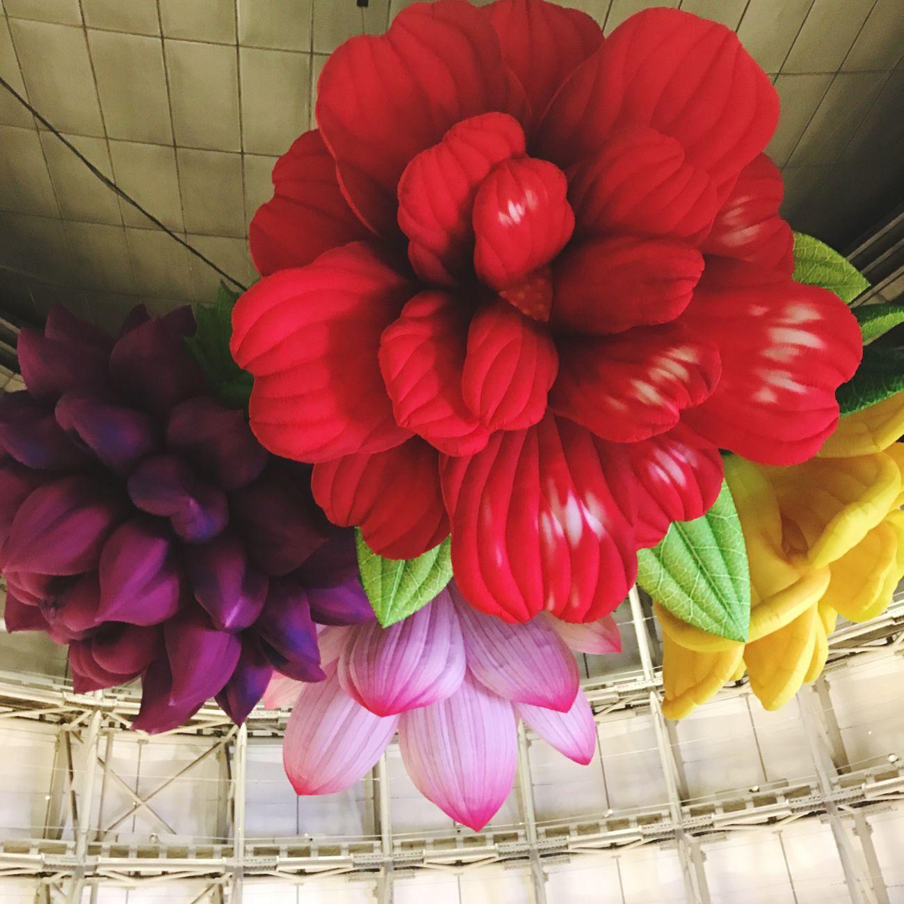 六本木アートナイト Flower Chandelier Tokyo Japan