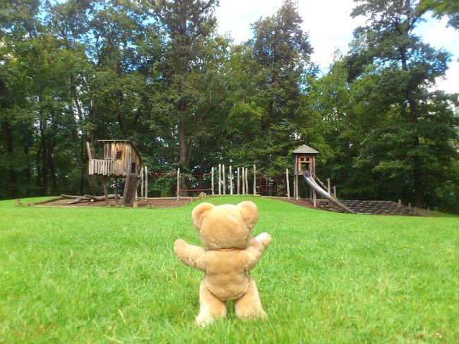A picture with a meaning for teddy. Form your own opinion and share it here. Kids Playing Kids Playing In Park Nature Outdoors Park Relaxation Relaxing Resting Ted Teddy And Friend Teddy_on_tour Dramatic Angles