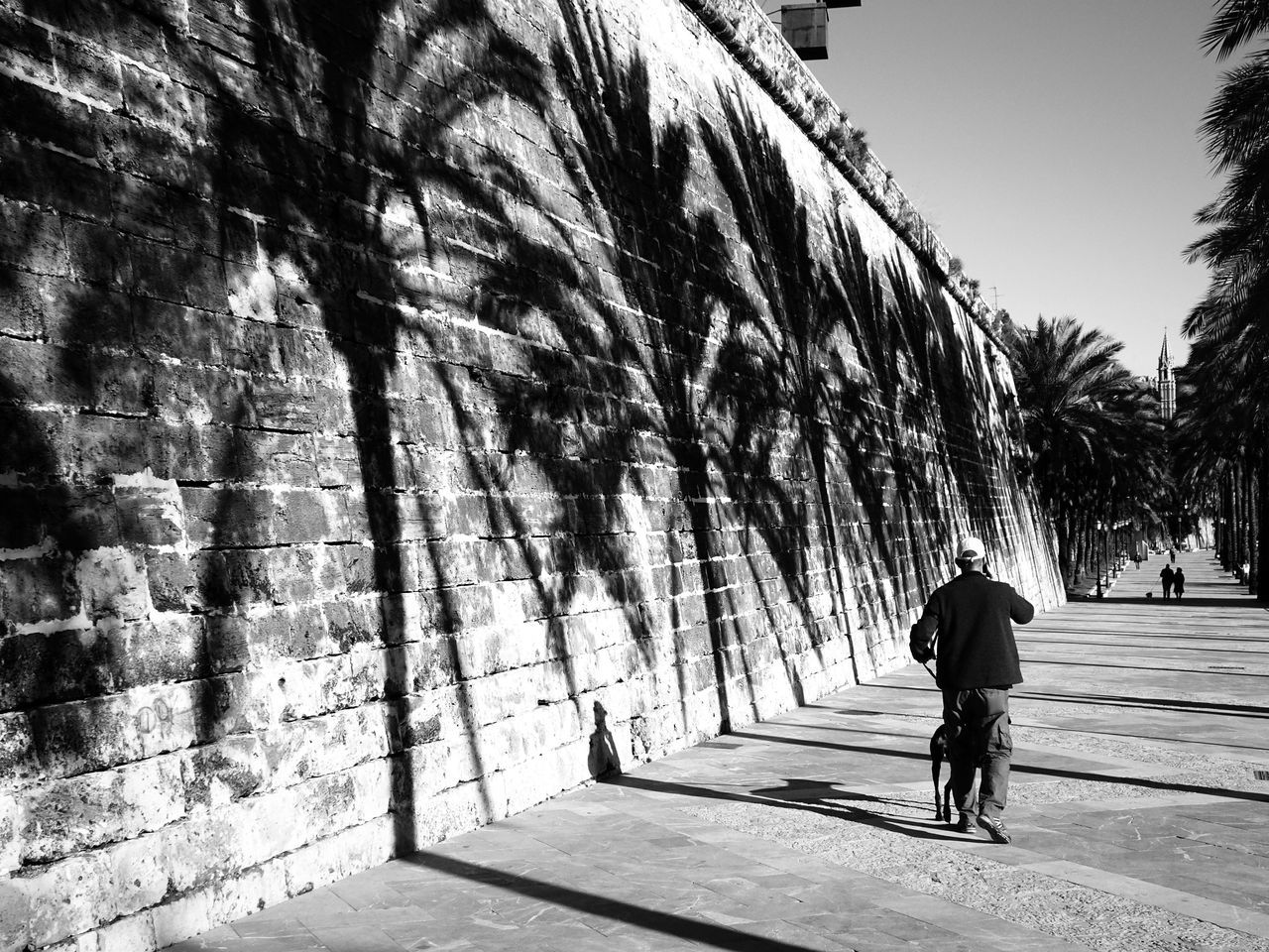 full length, real people, walking, rear view, one person, day, outdoors, men, lifestyles, built structure, standing, architecture, shadow, tree, building exterior, one man only, adult, people